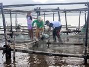 Thua Thien-Hue apuesta por desarrollo de economía marítima