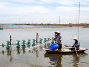Kim Son avanza en desarrollo de economía basada en el mar