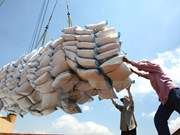 Laos incrementa exportaciones de arroz a China