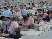 Economía de Vietnam se mantendrá sana incluso sin TPP, dice analista