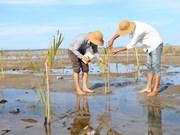 Resalta la participación vietnamita en cooperación regional en protección ambiental