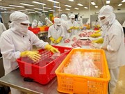 Provincia de An Giang prevé lograr 820 millones de dólares en exportaciones