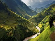 Vietnam figura entre los 10 destinos turísticos preferidos del mundo en 2017