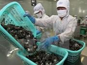Prevén leve incremento de exportaciones de productos acuícolas de Vietnam
