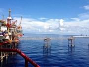 Industria vietnamita del gas duplicará producción en 2035