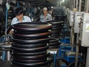 Casumina-principal fabricante de neumáticos y tubos en Vietnam