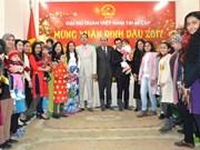 Vietnamitas en Egipto y Camboya celebran el Tet
