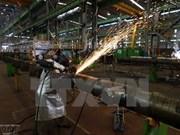 Vietnam logrará numerosos éxitos en 2017, según expertos rusos