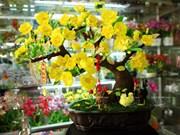 Hermosas flores de arcilla