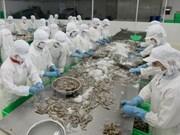 Australia alivia restricciones para importación de camarones