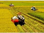 Festival de Agricultura del Delta del Mekong centrará en aplicaciones tecnológicas