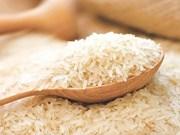 Indonesia comprará nueve millones de toneladas de trigo