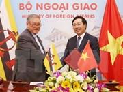 Vietnam y Brunei buscan estimular intercambio comercial