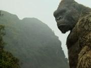¿Por qué Vietnam es el lugar perfecto para Kong: la Isla Calavera?
