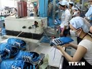 Sector de cuero y calzado de Vietnam en busca de impulsar su desarrollo