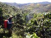 Región altiplánica prevé atraer 10 mil millones USD en capitales para 2020