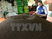 India levanta prohibición de importaciones de productos agrícolas vietnamitas