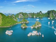 Vietnam espera atraer más visitantes estadounidenses con Feria Internacional de Turi