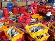 En alza producción acuícola de Vietnam en primer trimestre de 2017