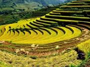 Promueven turismo en la región del Noroeste de Vietnam