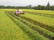 Centro Internacional de Agricultura Tropical conmemora su fundación