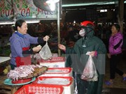 Un año de incidente provocado por Formosa: La vida vuelve a la normalidad en el centro de Vietnam