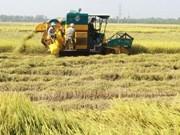 Economía de Vietnam mantiene buenas perspectivas, según Banco Mundial