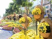 Efectuarán festival de flores en provincia altiplánica vietnamita