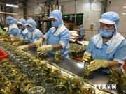 Registran aumento de exportaciones agroforestales de Vietnam