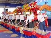 Construyen en provincia vietnamita fábrica de procesamiento de frutas para exportación