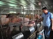 Gobierno vietnamita responde a preocupaciones de opinión pública sobre diversos asuntos