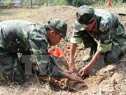 Desactivan bombas remanentes de la guerra en Vietnam