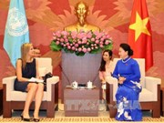 Vietnam desea fortalecer lazos multisectoriales con Países Bajos