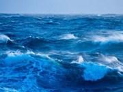 Vietnam celebra Día Mundial del Océano con diversas actividades