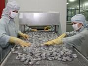Australia alivia medida de suspensión de importaciones de camarón de Vietnam