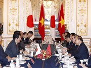 Premieres de Vietnam y Japón acuerdan orientaciones para futuros lazos