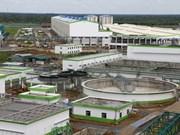 Vietnam y Estados Unidos exploran oportunidad de cooperación en bioenergía