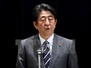 Japón aspira a cooperar con ASEAN en mantenimiento de un orden internacional abierto