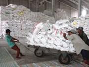 Precio de exportación para el arroz de Vietnam alcanza su nivel máximo de último tres años
