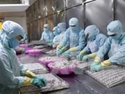 En alza exportaciones de productos acuícolas de Vietnam