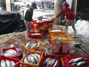 Thua Thien-Hue aumenta rendimiento de producción de mariscos tras incidente ambiental