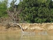 Provincia vietnamita implementará proyectos para prevenir inundaciones