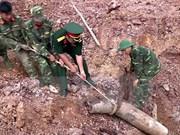 Vietnam intensifica entrenamiento de zapadores para operaciones de paz