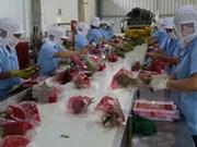 Pitahaya de Vietnam está presente en 40 mercados