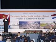 Enfrentamiento a cambio climático: sector potencial para colaboración Vietnam- Países Bajos