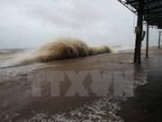 Provincias centrovietnamitas se preparan ante la llegada del tifón Talas