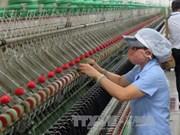 Alemania impulsa proyecto de uso efectivo de energía en empresas vietnamitas