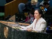 Vietnam llama a coexistencia pacífica entre Israel y Palestina