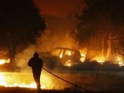 Decenas de indonesios hospitalizados por humo de incendio forestal