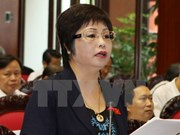 Inician en Vietnam procedimiento legal contra exdiputada por fraude comercial